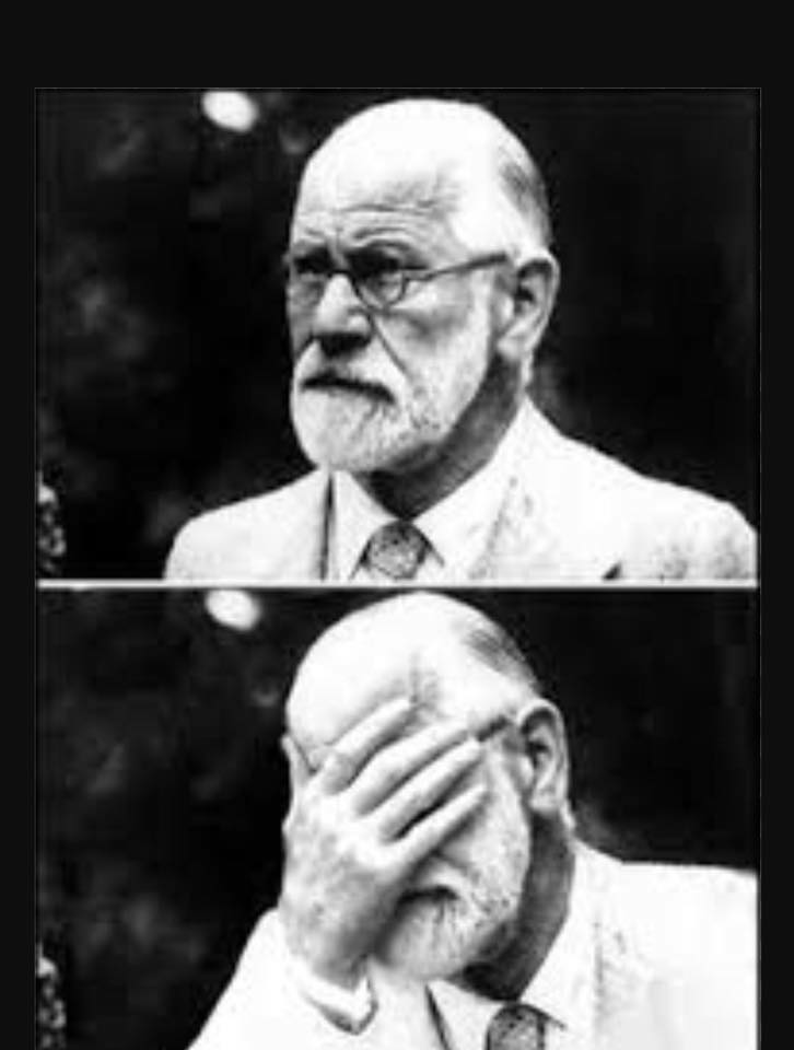 Vergonha Freud